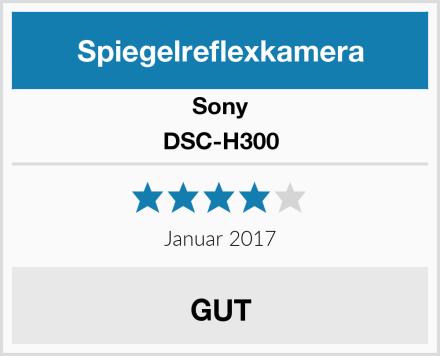 Sony DSC-H300 Test